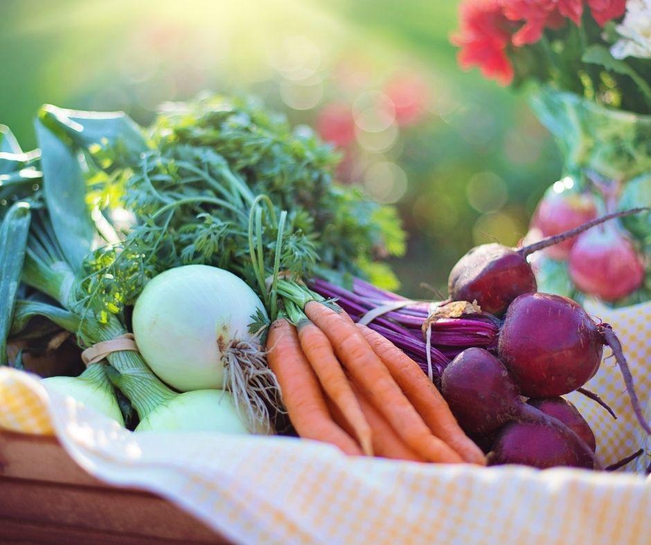 Quelques Légumes avec carottes au 1er Plan