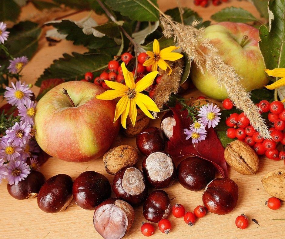 Pomme Chataignes et Fleurs
